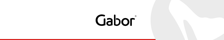 gabor_header