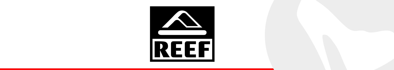 reef_header
